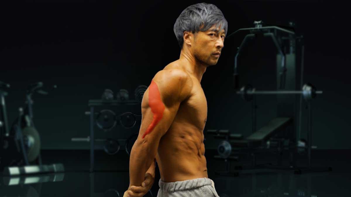 【目指せ上腕40cm超え!Part3】腕トレ。ダンベル・テイトプレス。ダンベルで太い腕を作る。三頭筋外側頭をデカくしてアウトラインを強化する。腕を太くし力強い身体を作る!